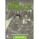 Big Bugs 2 Teachers Book